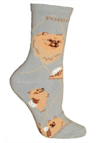 Pomeranian on Gray Sock Size 9-11