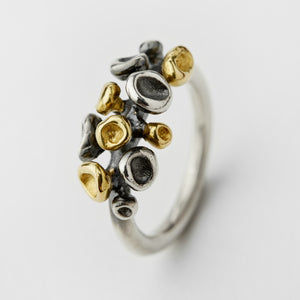 Erythrocyte Silver & Gold Ring