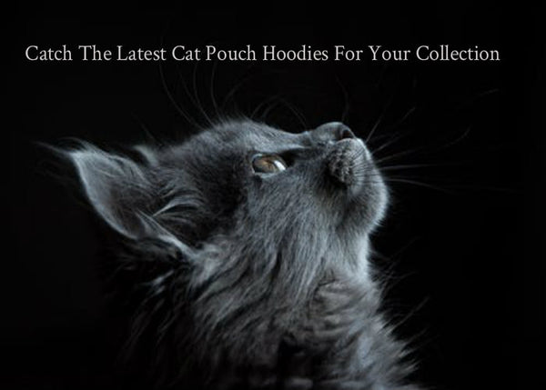 Catch The Latest Cat Pouch Hoodies For Your Collection