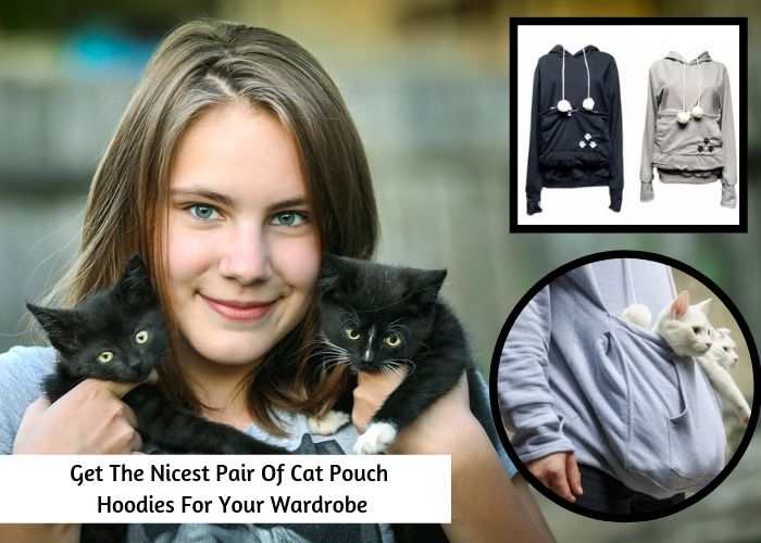 Get The Nicest Pair Of Cat Pouch Hoodies For Your Wardrobe