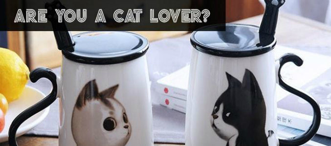 6 Types Of Gift Options For The Cute Cat Lover