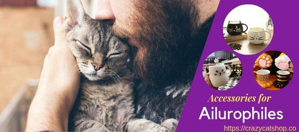 3 Accessories for Ailurophiles that Come Personalized With Their Pets!