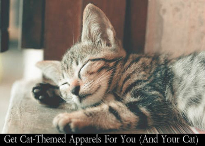 Get Cat-Themed Apparels For You (And Your Cat)