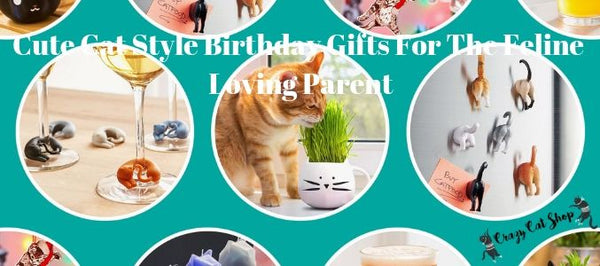 Cute Cat Style Birthday Gifts For The Feline Loving Parent