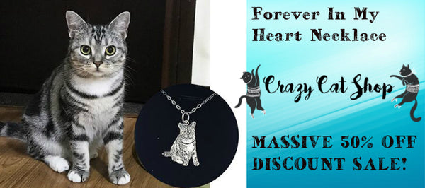 Things To Know About Styling The Quirky And Paw-Some Cat Necklace