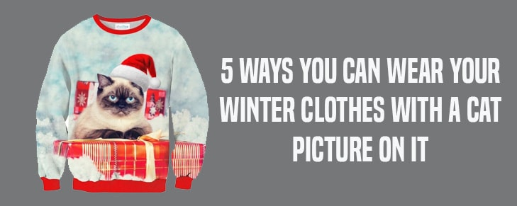 5 Ways You Can Wear Your Winter Clothes with A Cat Picture on It