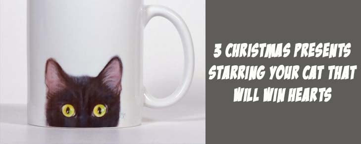 3 Christmas Presents Starring Your Cat That Will Win Hearts