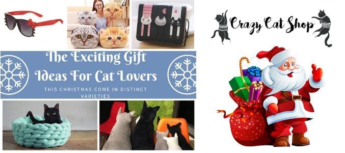 The Exciting Gift Ideas For Cat Lovers This Christmas Come In Distinct Varieties