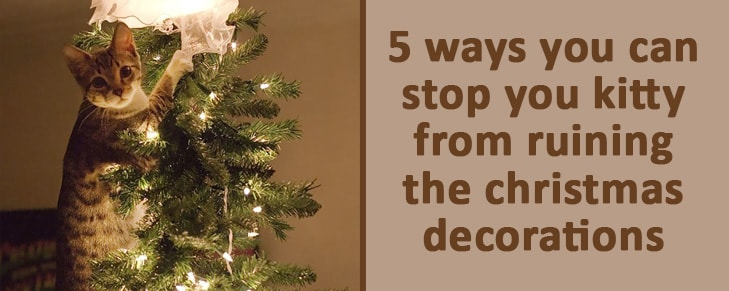 Cat Proof Christmas Tree.5 Absolutely Brilliant Ways To Cat Proof Your Christmas