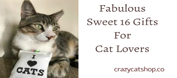 A Guide To Fabulous Sweet 16 Gifts For Cat Lovers!