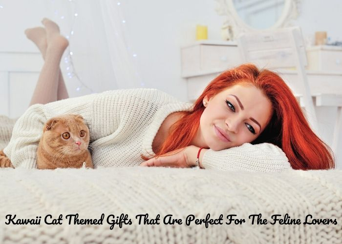 Kawaii Cat Themed Gifts That Are Perfect For The Feline Lovers