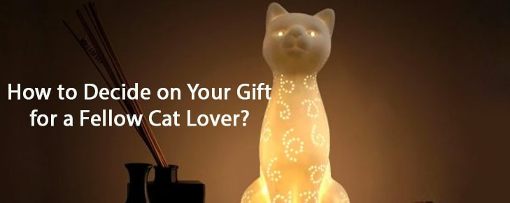 How to Decide on Your Gift for A Fellow Cat Lover?