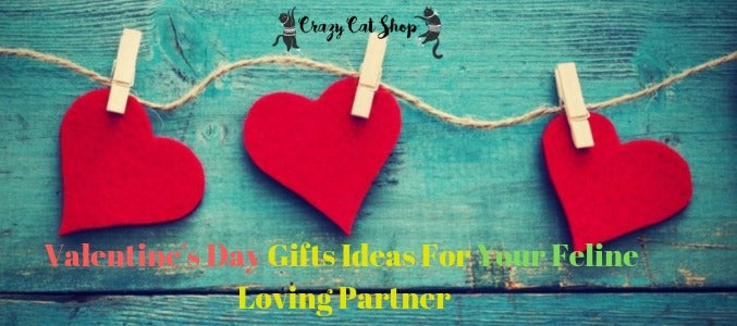Valentine's Day Gifts Ideas For Your Feline Loving Partner