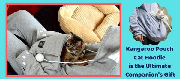 Why the Kangaroo Pouch Cat Hoodie is the Ultimate Companion's Gift!