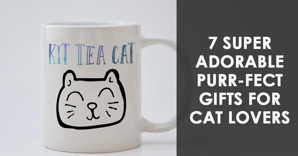 7 Super Adorable Purr-Fect Gifts for Cat Lovers
