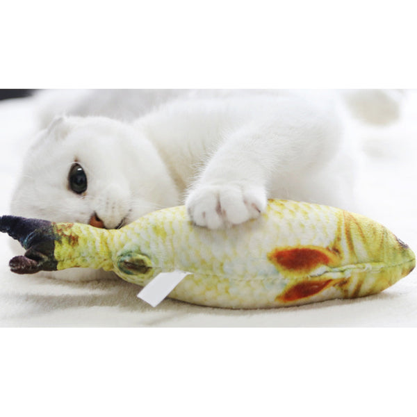 Hey Fishie Fishie Cat Toy