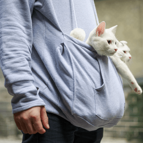 Crazy Cat Carry Me Everywhere Cat Pouch Hoodie
