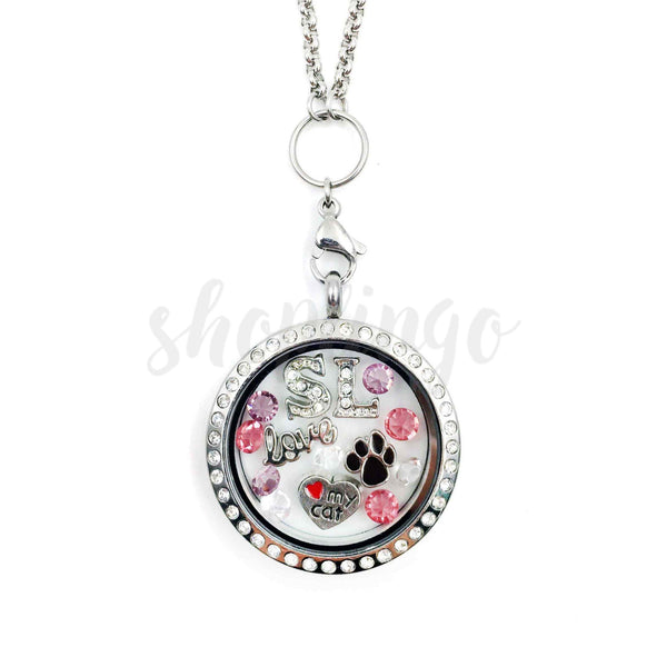 Crazy Cat Lover Locket