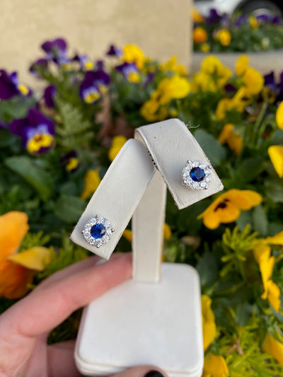 14k White Gold and Sapphire Earrings - Charlotte's Inc