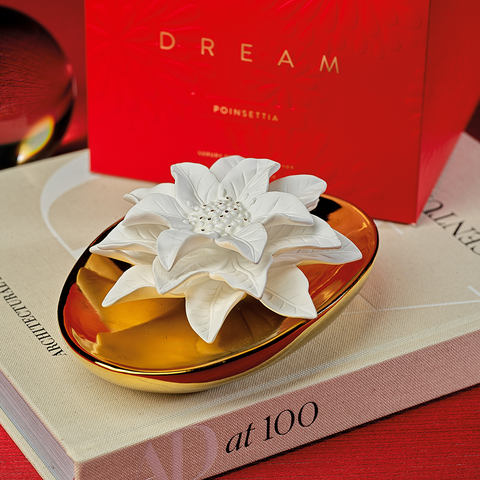Dream Poinsettia Porcelain Diffuser