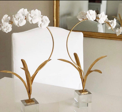 Orchid in a Stand with Acrylic Base - Charlotte's Inc