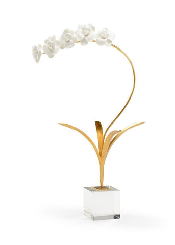 Large Orchid in a Stand with Acrylic Base - Charlotte's Inc
