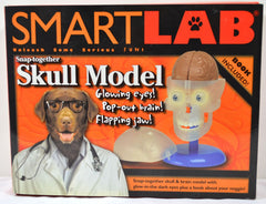 SmartLab Snap- Together Skull Model - FS GIFTS