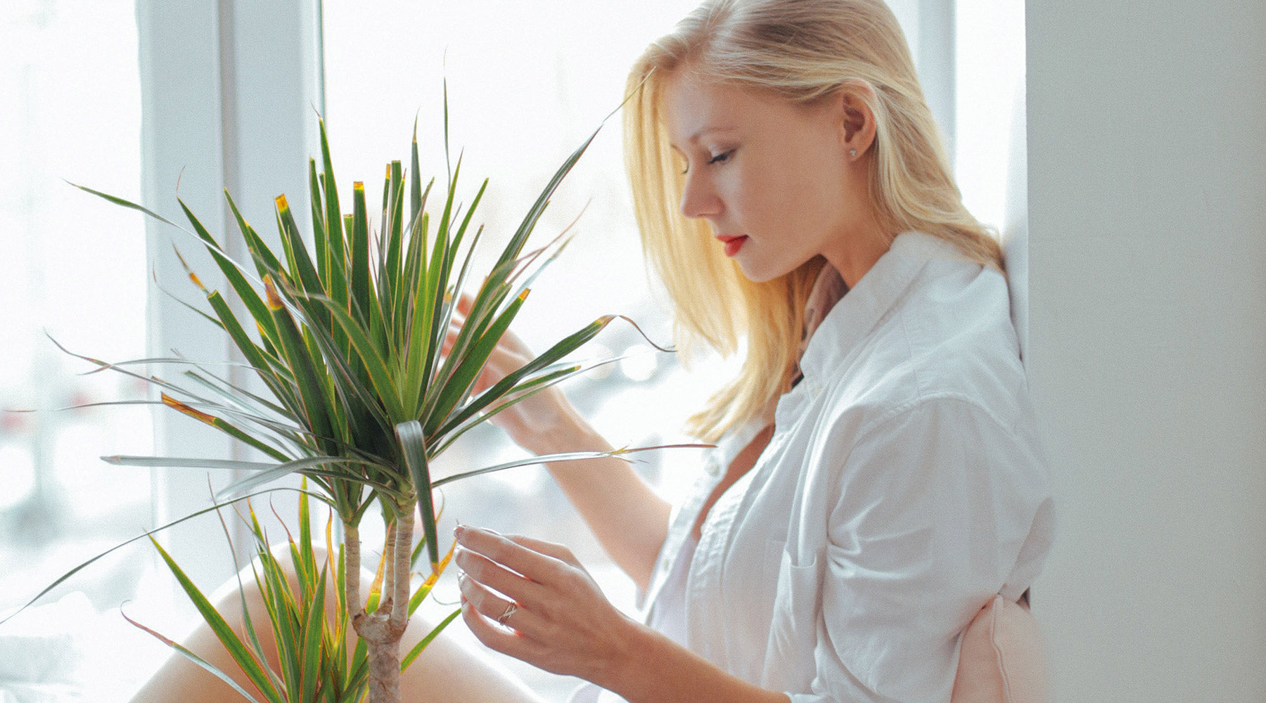Woman with plant by the window