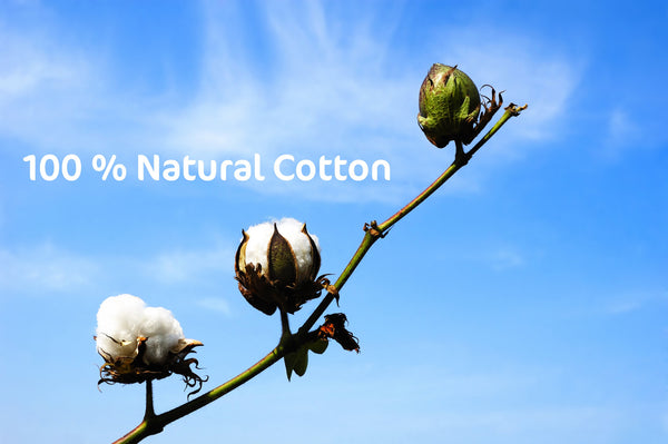 Natural cotton branch