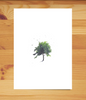 Plant-a-Tree Sympathy Card - Watercolor Tree