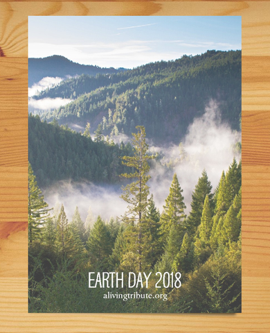 Plant a Tree for Earth Day 2019 - A Living Tribute