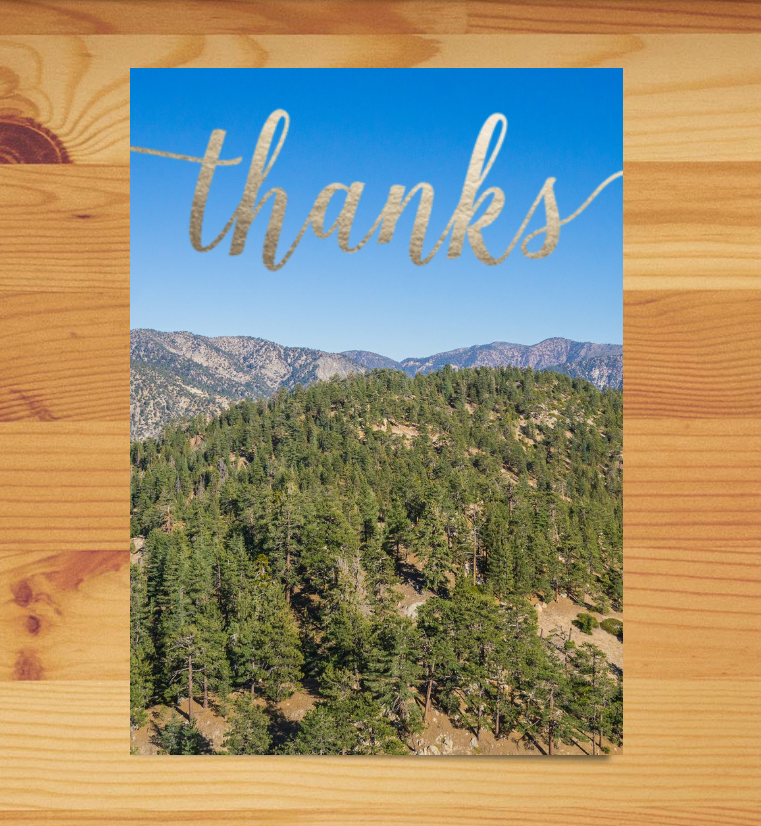 Plant-a-Tree Thank You Card
