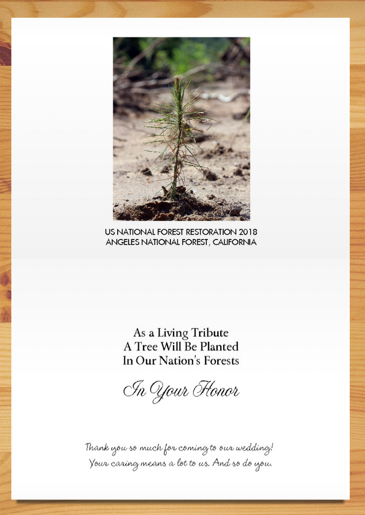 Plant-a-Tree Cards – A Living Tribute