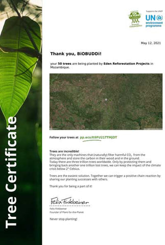 plant for the planet - Eden Reforestation Projects Mozambique