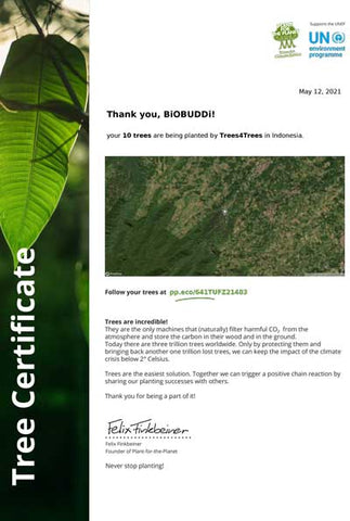 Plant for the planet Indonesia