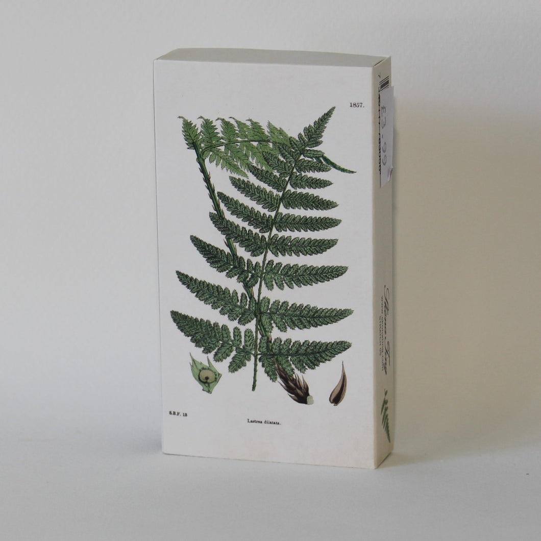 Ferns Matchbox