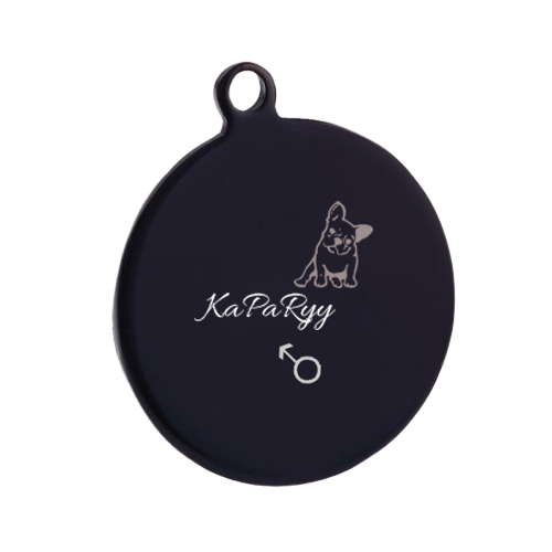 Black Style - Pet TAG - Dog_Apparel