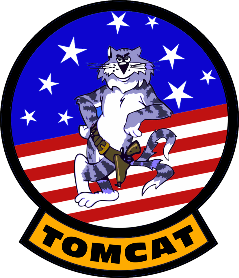 F-14 Tomcat Patch