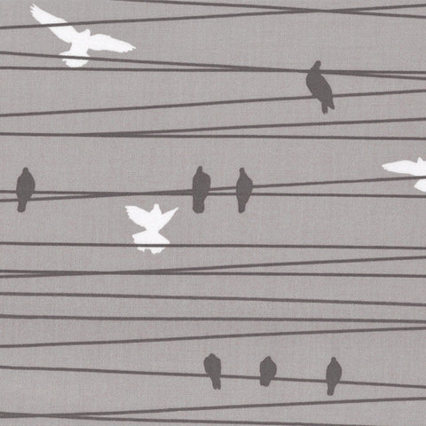 Birds on a Wire Lap Blankie