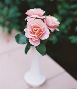 Rose Subscription, Local Delivery