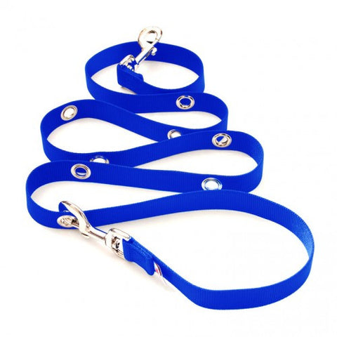 SnapLeash | Blue | 6ft Length x 1in Wide