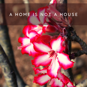 A Home is not a House