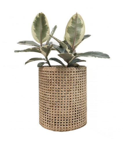 Beliz Rattan Planter Small