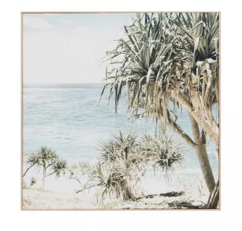 Coastal Palms Canvas