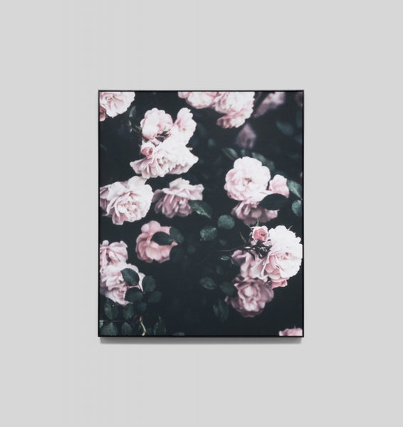 Canvas Midnight Bloom