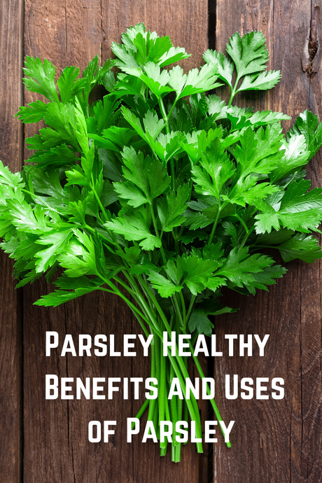 Health Benefits and Uses of Parsley  - Parsley Healthy