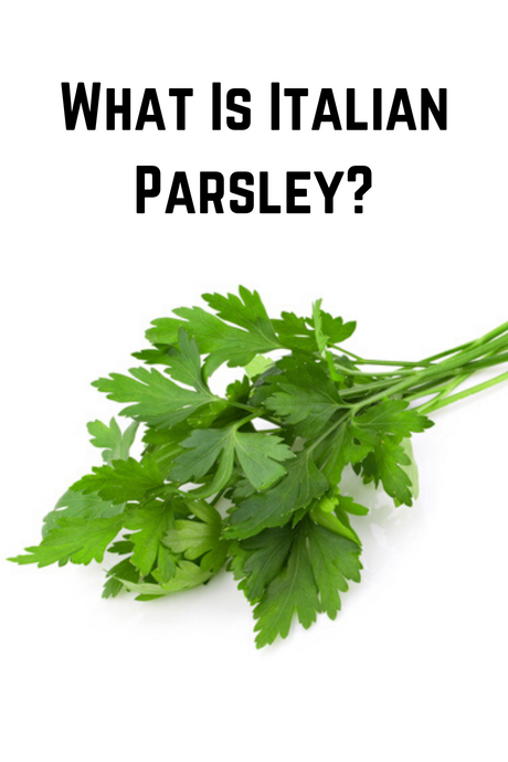 What Is Italian Parsley?