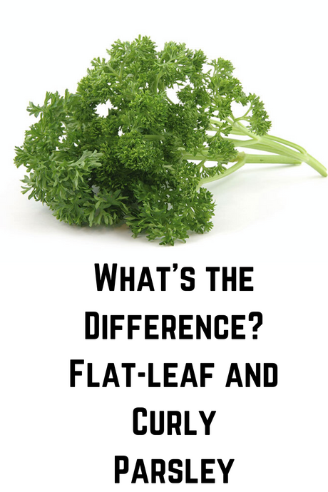 What's the Difference? Flat-leaf and Curly Parsley