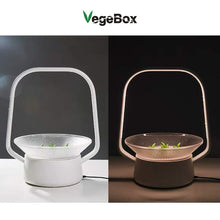 Load image into Gallery viewer, VegeBox Stylist Smart LED Hydroponics Growing System, Indoor LED Lighting Herb Garden Plant Germination Kits (V-Basket, White) V-Basket