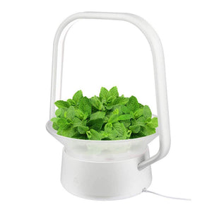 VegeBox Stylist Smart LED Hydroponics Growing System, Indoor LED Lighting Herb Garden Plant Germination Kits (V-Basket, White) V-Basket